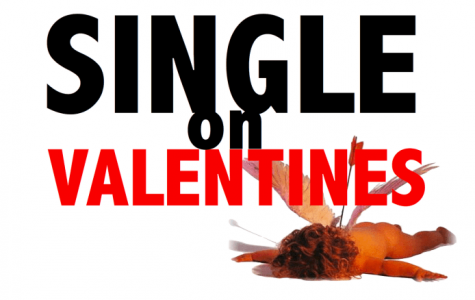 A Single Lady's Guide to V-Day!